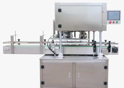 Automatic stainless steel seamer type MHFGJ100D-V1 overview